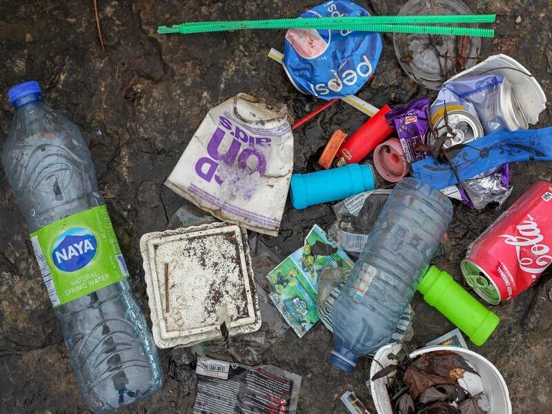 Ue, addio plastica usa e getta: dai bicchieri alle cannucce, cosa cambia