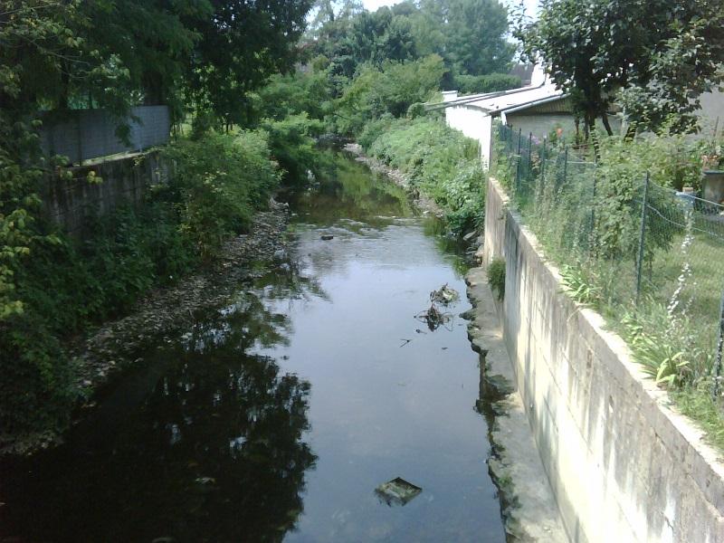 Lombardia, pesticidi e diserbanti nei fiumi: la Statale li studia con le alghe